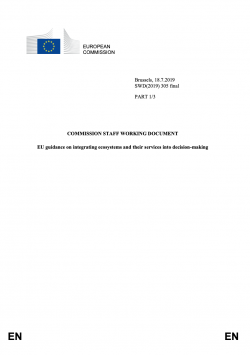 The EU Guidance document on integrating ecosystems and their services in decision-making