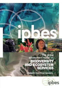 Global Assessment Report on Biodiversity and Ecosystem Services (IPBES)